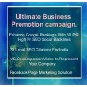 Ultimate Business promotion campaign